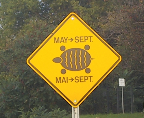 Turtle crossing sign along County Road 8