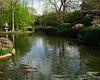 FW Japanese Gardens 2