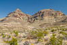 Chisos Mountains and Desert Color