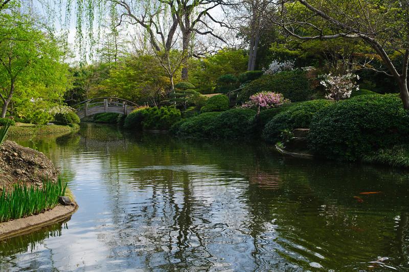 FW Japanese Gardens 1