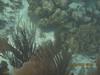 Belize_3_0062
