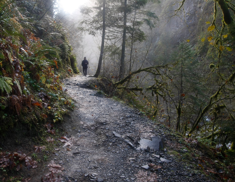 Trail to Wahclella Falls, Columbia Gorge