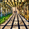 Pathway - The Biltmore Estate - Asheville, NC
