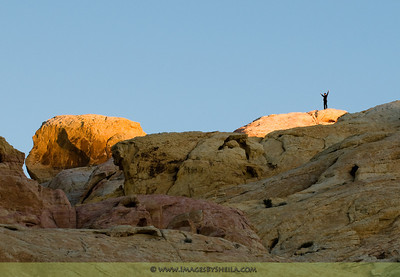 Man cheering on top of the mountain rock at Valley of the Fire State Park (Nevada, USA)