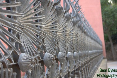 The Fence- Barcelona