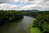 "2380-River through the rainforest in Australia <a href=""http://www.cwcphotography.com/gallery/1199387"">(8x12)</a>"