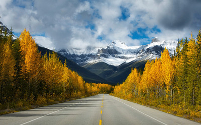 A beautiful road in Banff National Park Canada