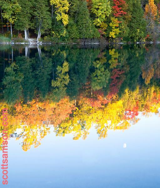 Fall Colors/Full Moon