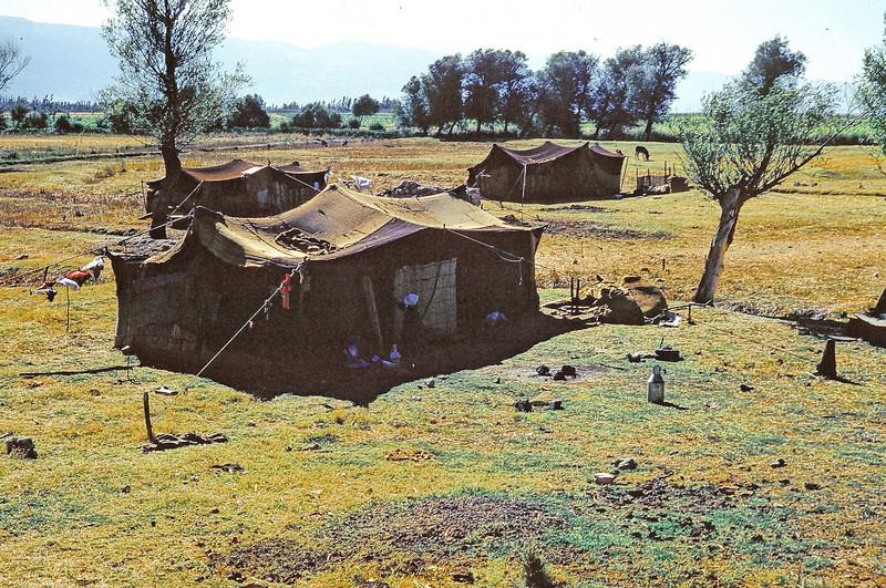 Bedowin camp