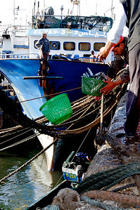 Agadir harbour: fisher men collecting fish from a small boat docked above: note the crossing  precision  between empty and full baskets.