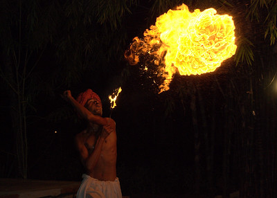 The real 'flame-thrower'! This was part of the evening entertainment at our lodge at Ranthambore Tiger Reserve/National Park in Rajasthan, India.