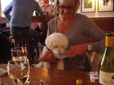 Daisy Drinking at The Black Horse