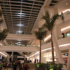Swanky mall in Zona Rosa