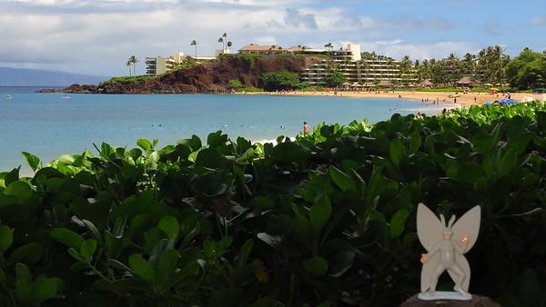 2016-08-15 Black Rock Beach, Maui