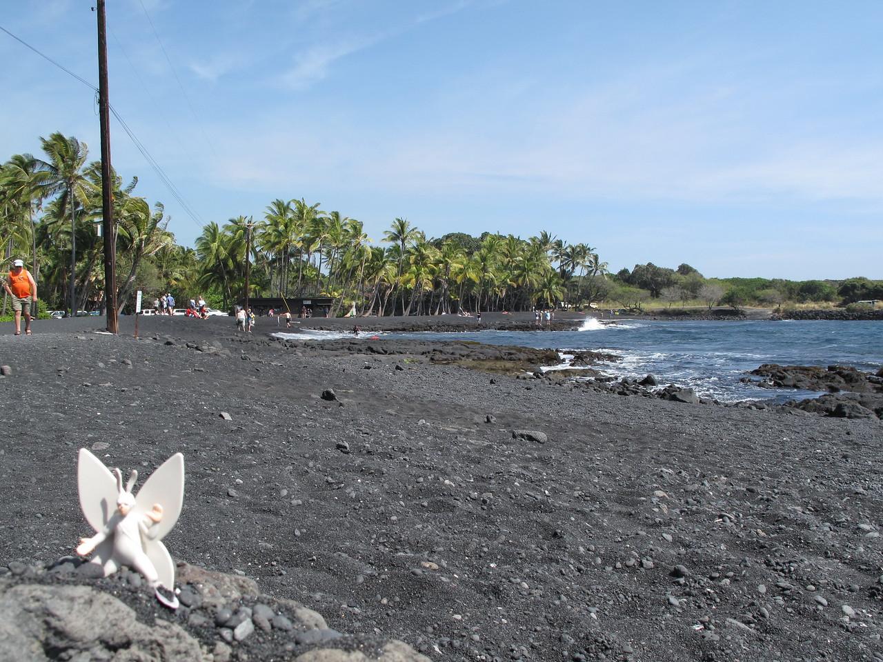 2011-10-29 Punalu'u Black Sand Beach, Hawaii