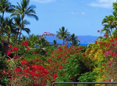 2013-03-05 Wailea Ekahi Village, Maui