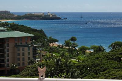 2012-02-23  Ka'anapali south, Maui