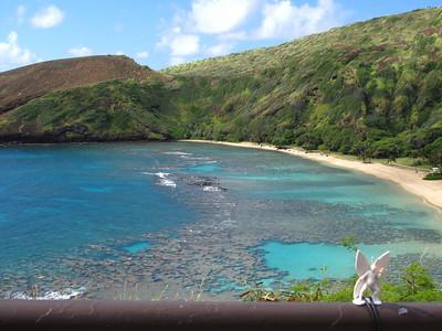 2011-03-12 Hanauma Bay, Oahu
