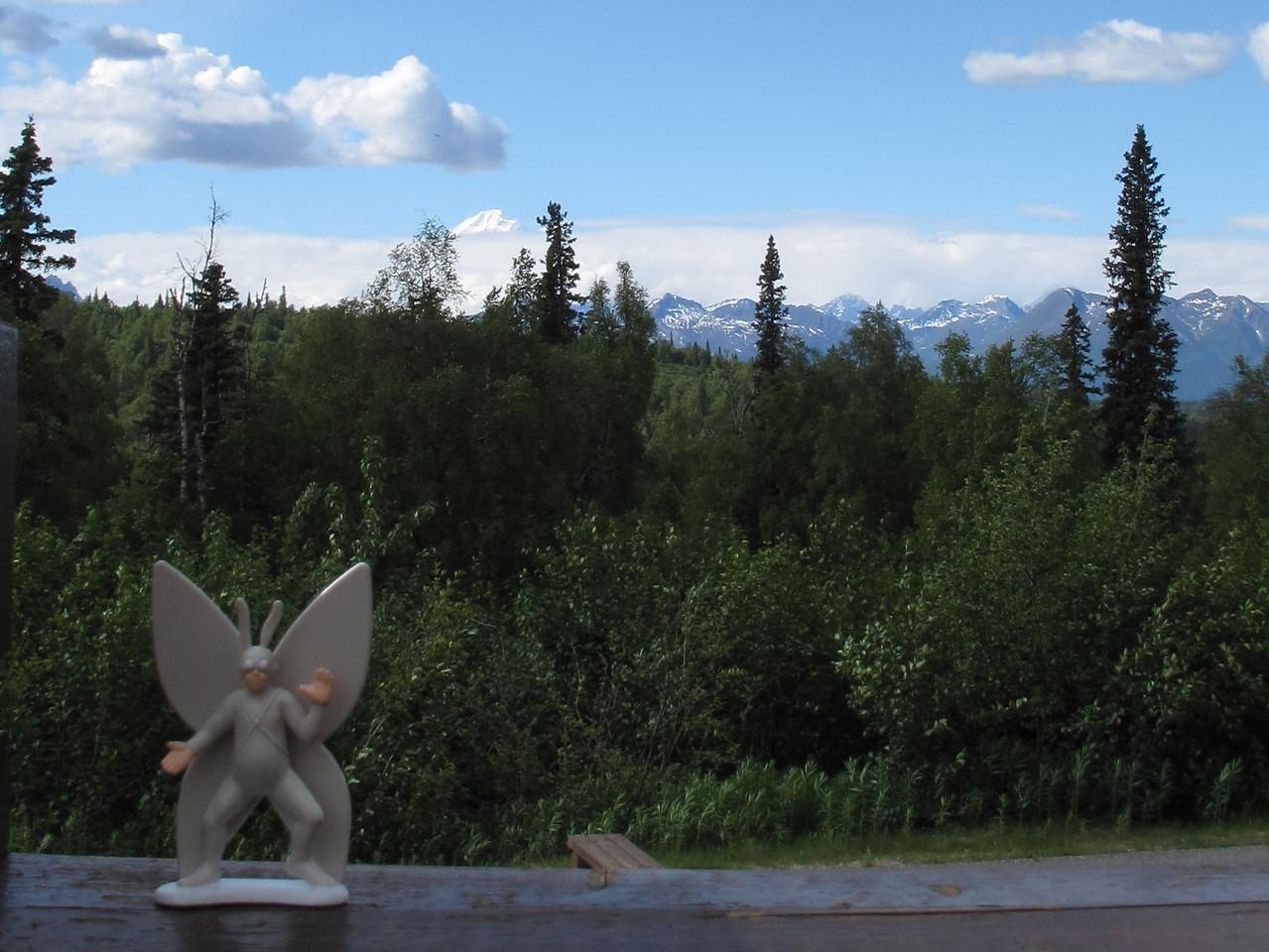 2010-06-05 Mt. McKinley, Alaska
