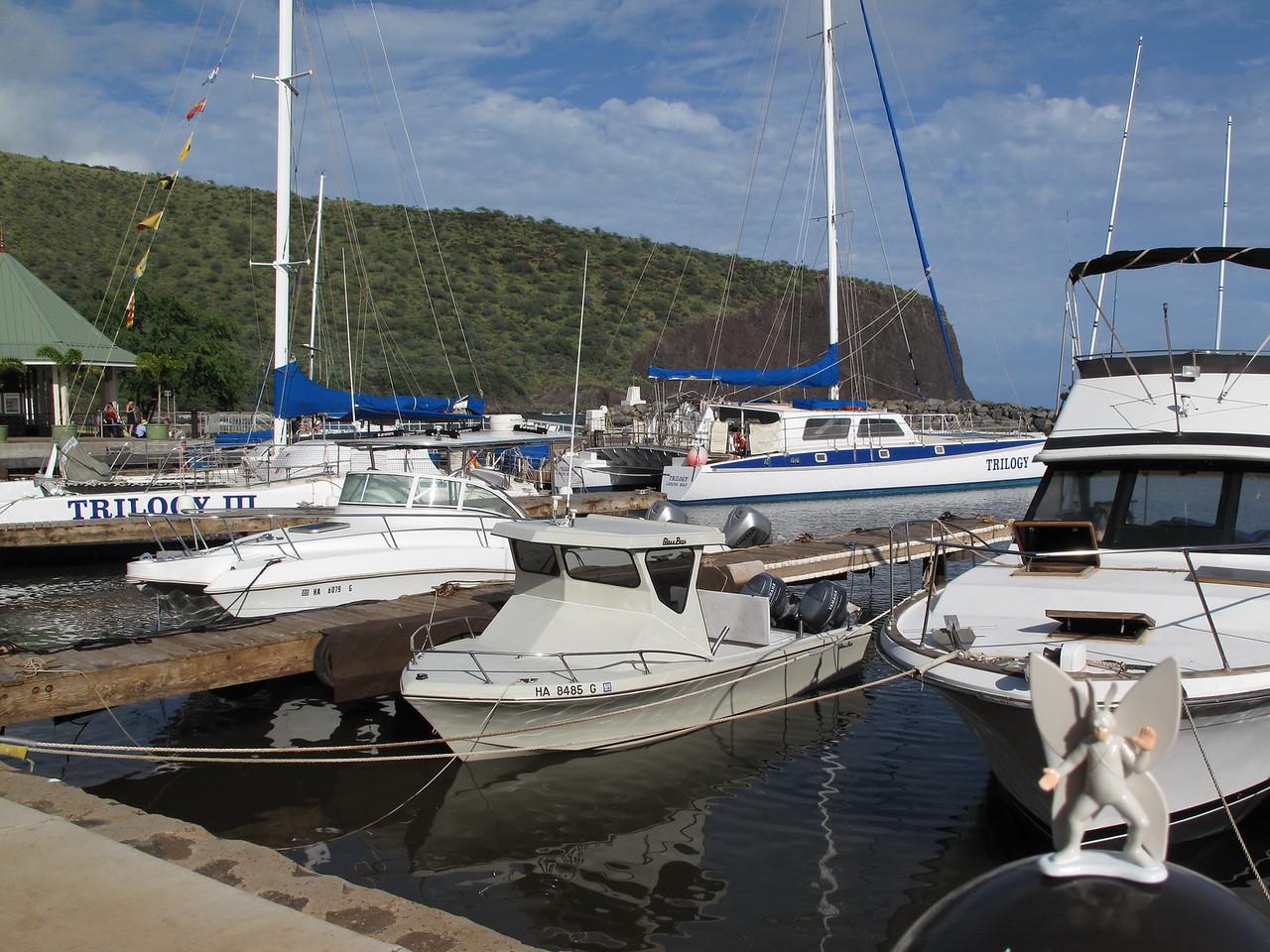 2011-10-29 Lana'i Harbor, HI