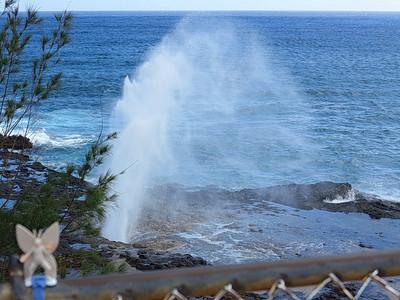 2013-02-28 Spouting Horn, Kauai