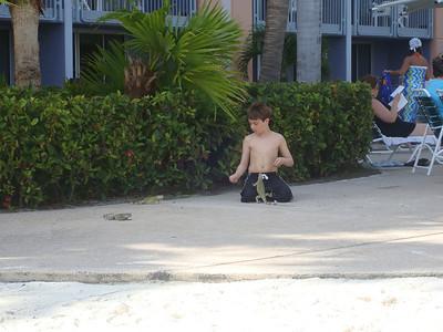 Aruba  -  2007