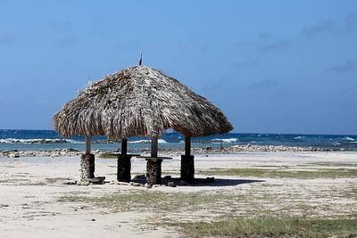 Aruba1-0127