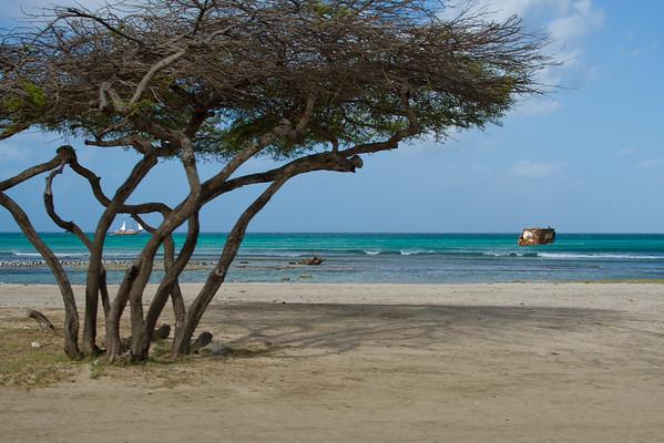 Aruba March Break 2015