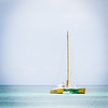 Aruba 20120507 - 0064