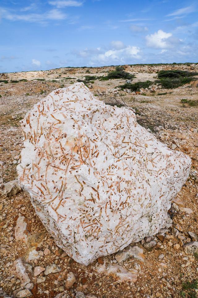 Rock, Arikok National Park, Aruba