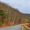 Blue Ridge Parkway - Late November