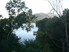 View from the back porch of the house we rented, Lake Lure, NC.