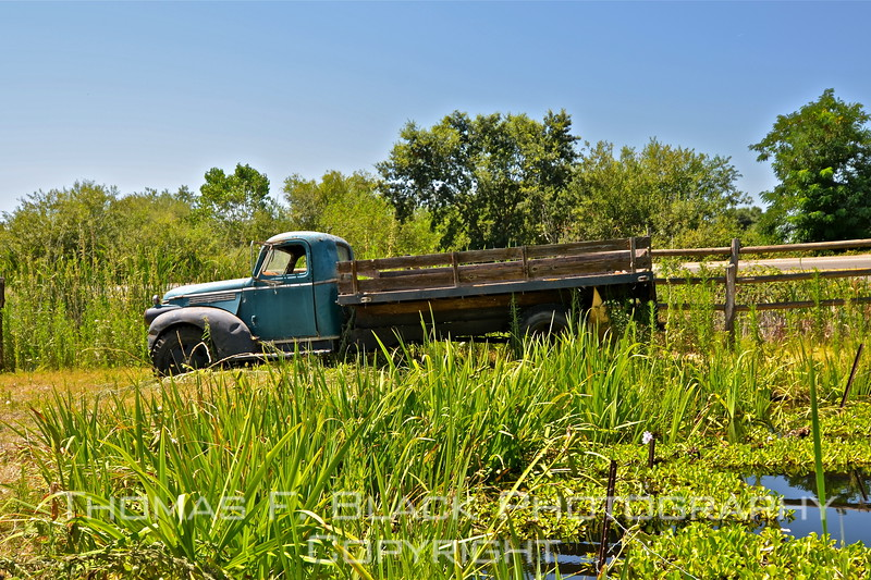This through frame 149, truck of unidentified make (due to interference of water-lily pond, prevented getting close enough to see nameplate).