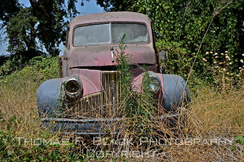 This through frame 128, two different 1940s Studebaker trucks.