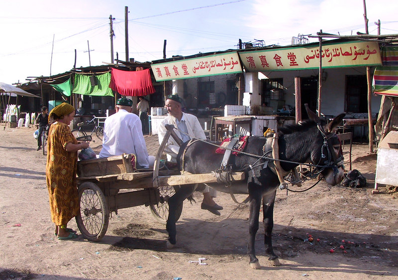 We got to Turpan by minibus and overnight train, but some of the locals are still using older forms of transport