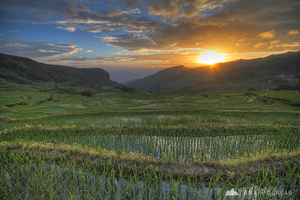 Mystical sunrise at the rice terraces in Yuanyang region