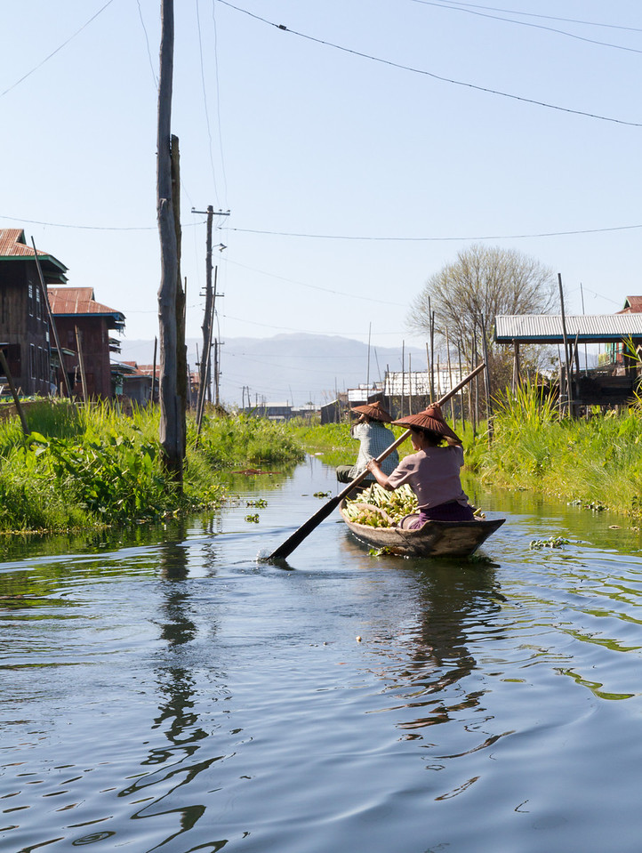"""A typical village """"street"""", composed of a series of parallel waterways."""