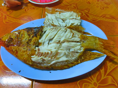24. December 15 Chiang Mai