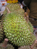 Durian fruit - forbidden in many public places