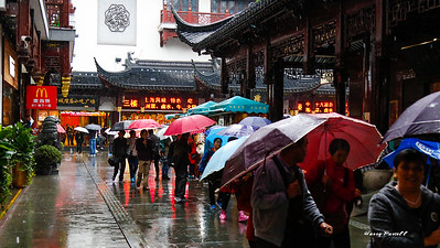 touring Shanghai in the rain, still lots of people on a Monday
