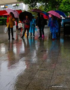touring Shanghai in the rain