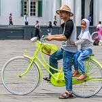 Bike Helmet Amyone?