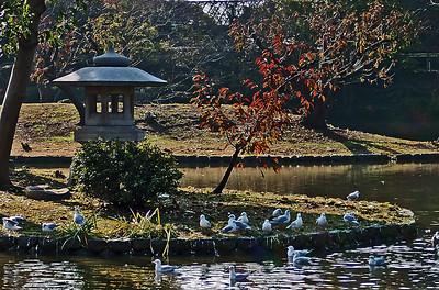 Peace in Japan By: Kimberly Marshall Kyoto