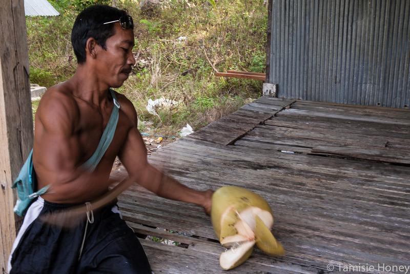 Wild Coconut skills