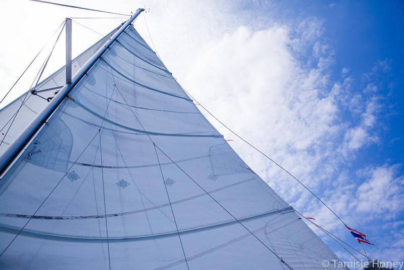 Sail on sailors