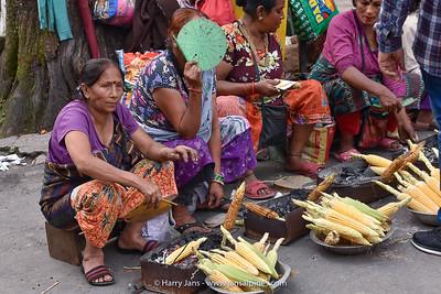 West Bengal,  Darjeeling, 2110m
