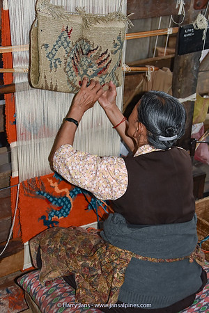 Tibetan Refugee Self Help Center in Darjeeling