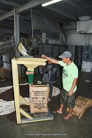 tae packing at Takvar Tea Factory