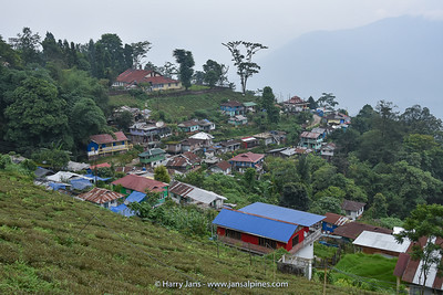 view near Takvar Tea Factory