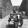 Horse-Drawn Cart - Jaipur, India